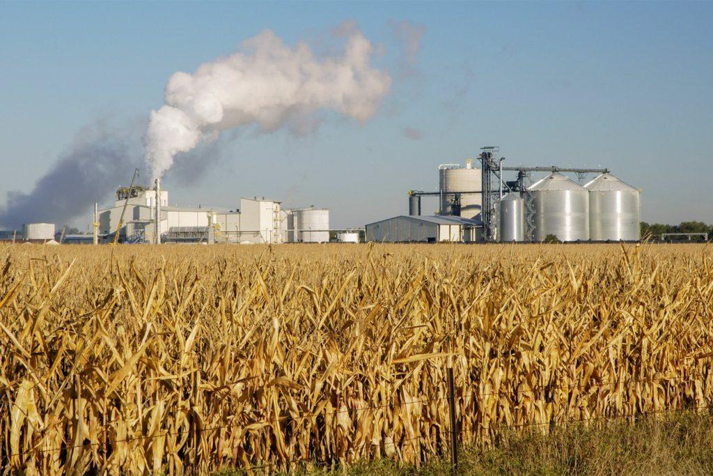 Produção de etanol pode não ser suficiente; o que isso significa?