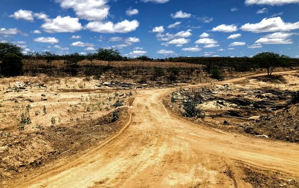 Produtores atingidos com a seca vão receber auxílio emergencial do governo; confira em quais cidades