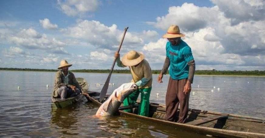 Seguro desemprego para pescadores: entenda as regras para pedir o benefício (Imagem: Reprodução - Google)