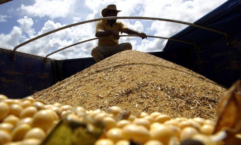 Coronavírus: agricultores pedem nova data para pagamento das dívidas