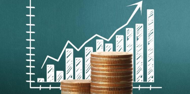 Investimento para iniciantes: Passo a passo para aumentar sua renda