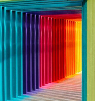 Paleta de diversas cores