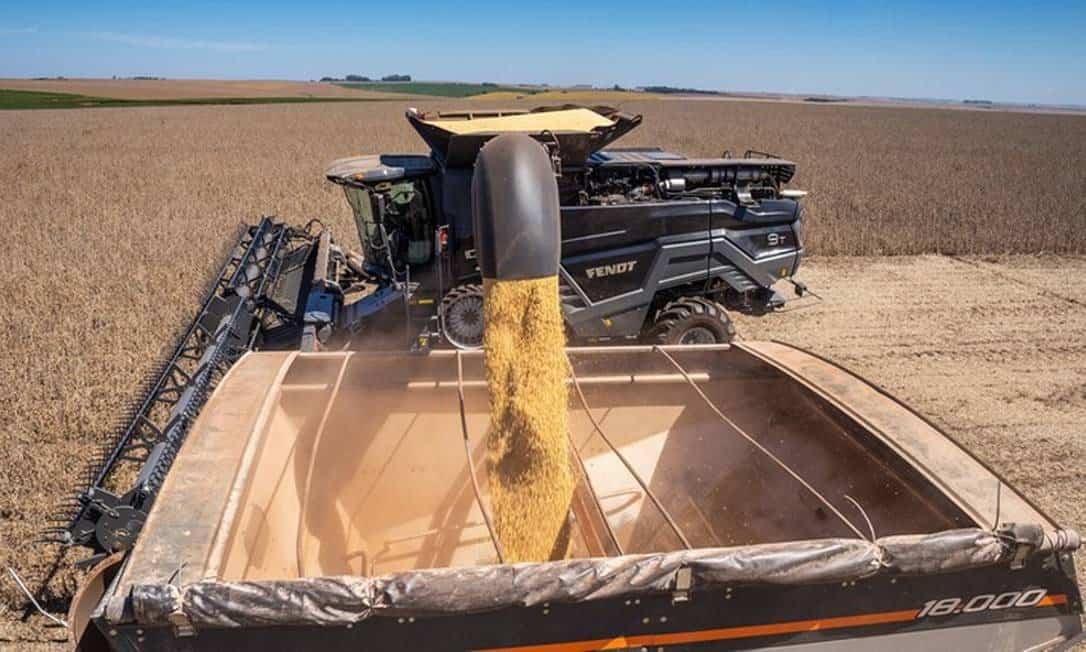 Tarifa de importação da soja e do milho são zeradas pelo governo; intenção é a queda de preços