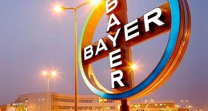Programa de Trainee: Magazine Luiza e Bayer criam seleção EXCLUSIVA para negros