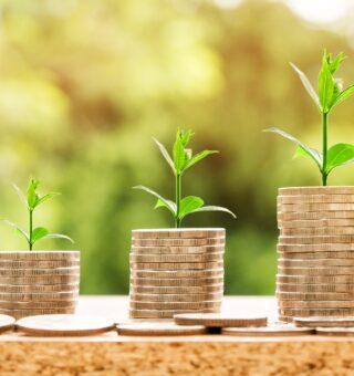 Conheça dicas para conseguir crédito no empréstimo para seu negócio