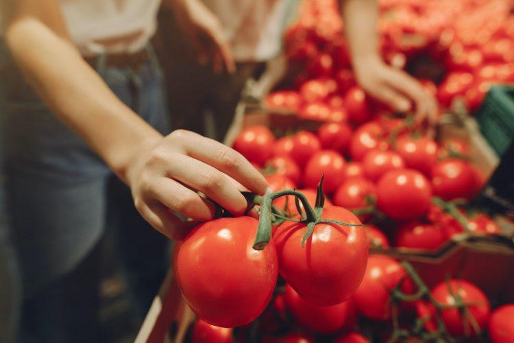 Geada no Brasil vai encarecer alimentos como verduras e legumes