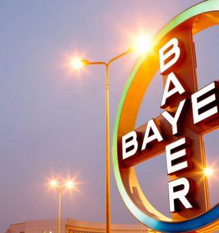 Bayer tem 160 vagas de emprego disponíveis em todo Brasil; confira cargos!