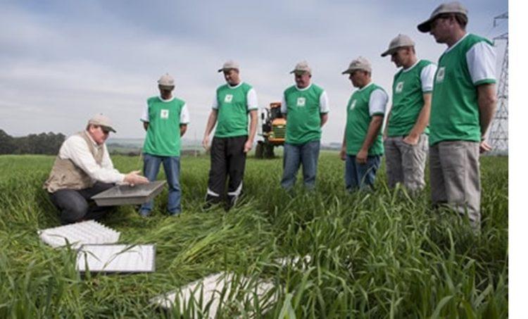 Jovem Aprendiz Rural: Como funciona? Inscrições e vagas pelo SENAR!