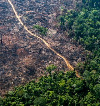 Licenciamento ambiental: Leia TUDO sobre proposta em pauta na Câmara