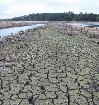 Crise hídrica ameaça 5 estados brasileiros e governo emite alerta preocupante