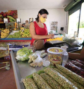 Aprovados no auxílio cesta básica do Ceará já podem consultar lista; veja como
