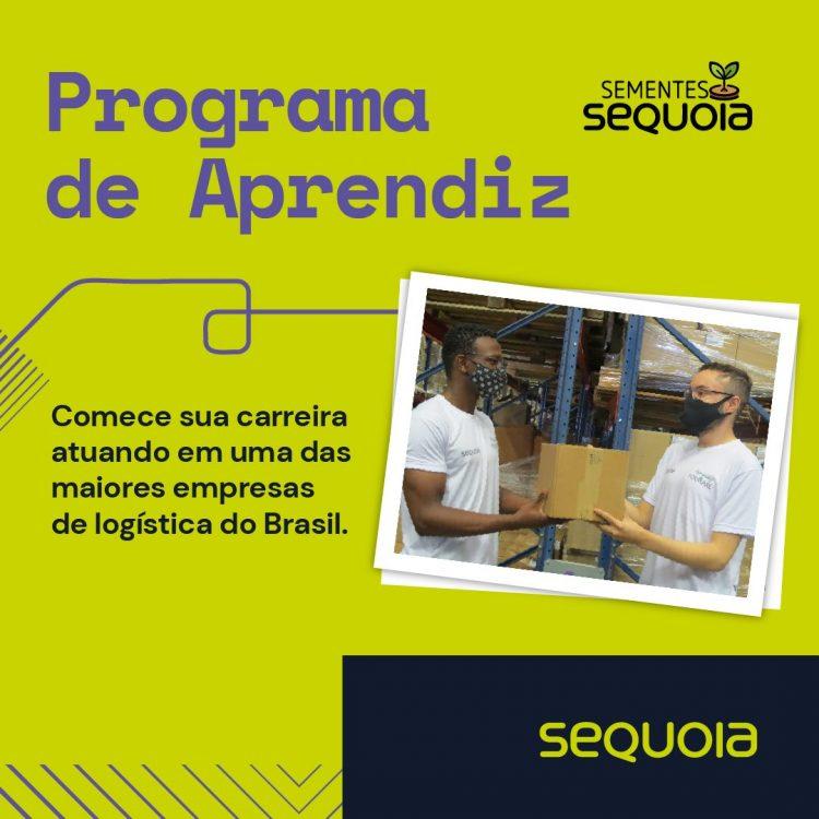 Jovem Aprendiz Sementes abrem inscrições para moradores de Taboão da Serra