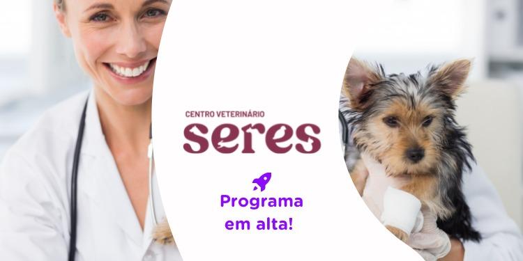 Vagas de trainee para veterinários abre inscrições; salário de R$ 3,3 mil
