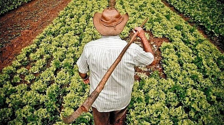 Bolsonaro veta projeto que ajudava pequeno produtor durante a pandemia